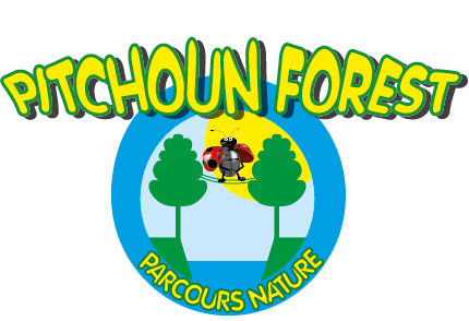 logo pitchoun forest
